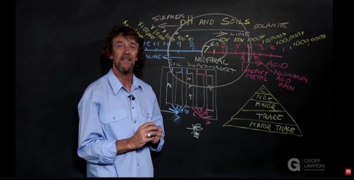 Voedingsstoffen, de bodem en planten: een korte uitleg