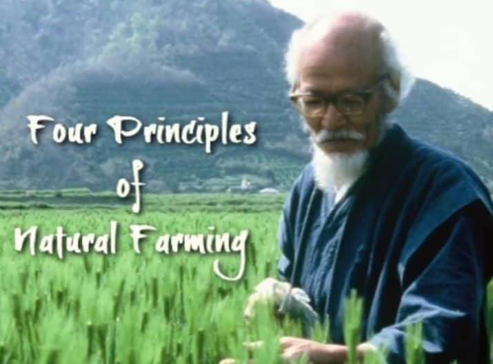Natuurlijke landbouw en Masanobu Fukuoka